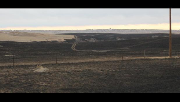 The Wolf Fire destroyed over 2,500 acres east of Wall.