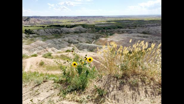 Winner of the 2015 Badlands/Bad River photo contest – places, first place – Elizabeth Leonard, Philip.