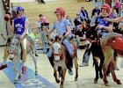 Donkey Basketball tournament